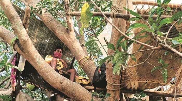 کورونا سے بچاؤ کیلیے لوگوں نے درخت پر بسیرا کرلیا