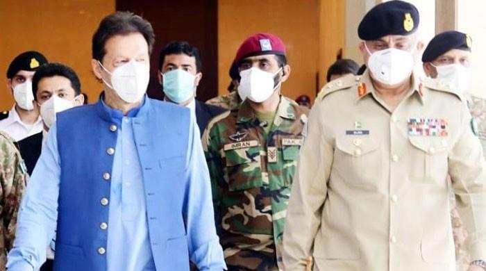 کووڈ 19 کے ساتھ ٹڈی دل کا حملہ بھی پاکستان کیلئے بہت بڑا چیلنج ہے، وزیراعظم