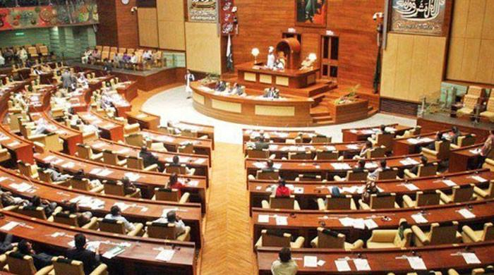 سندھ اسمبلی کے اجلاس میں ایان علی اور سیتا وائٹ کا تذکرہ چھڑ گیا